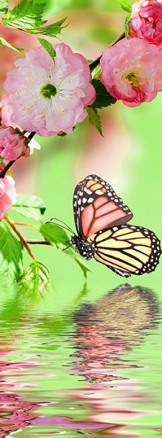 Фотообои ''Бабочки 100х270 см''