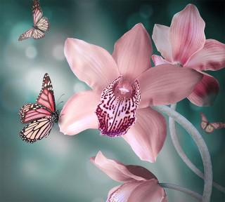 Фотообои ''Бабочки 300х270 см''