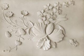 Фотообои ''Барельеф цветы на стене 400х270 см''